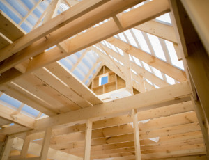 Nachhaltig bauen und leben mit Holz